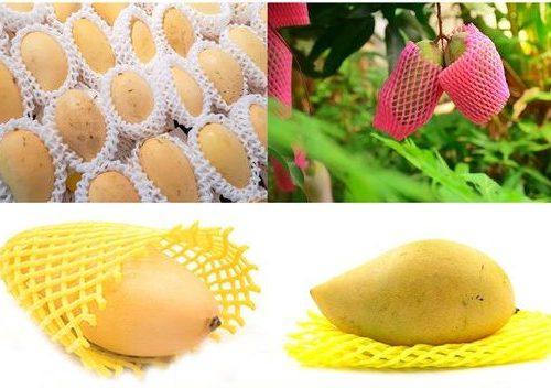 eps sheets, fruit foam net